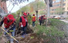 赤峰爱心家园志愿者协会进社区义务植树